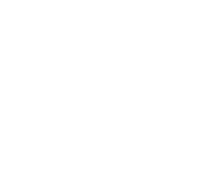 Bank collection and recovery software efficiency icon.