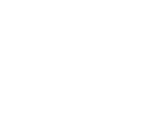 Bank collection and recovery software special assets monitoring icon.